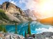 Moraine lake summer panorama
