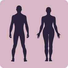 Full Length Front Human Silhouette Set