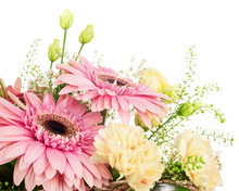Fragment Of Bouquet From Gerbera And Carnations Isolated On Whit