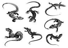 Black Lizards With Tribal Orna...