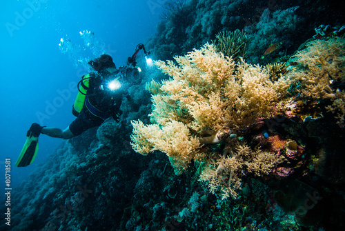 diver take a photo video coral kapoposang indonesia scuba diving