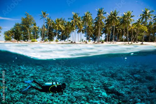 Fototapeta scuba diver island kapoposang indonesia bali lombok obraz