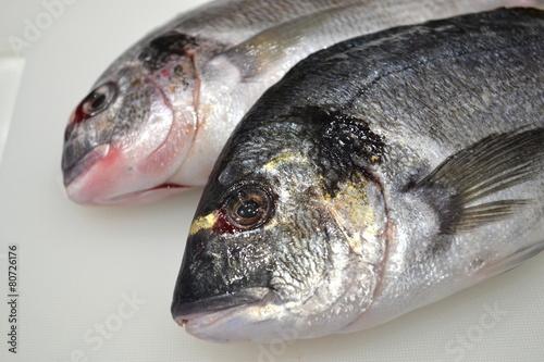 Acrylic Prints Fish Dorado fish on the table chef