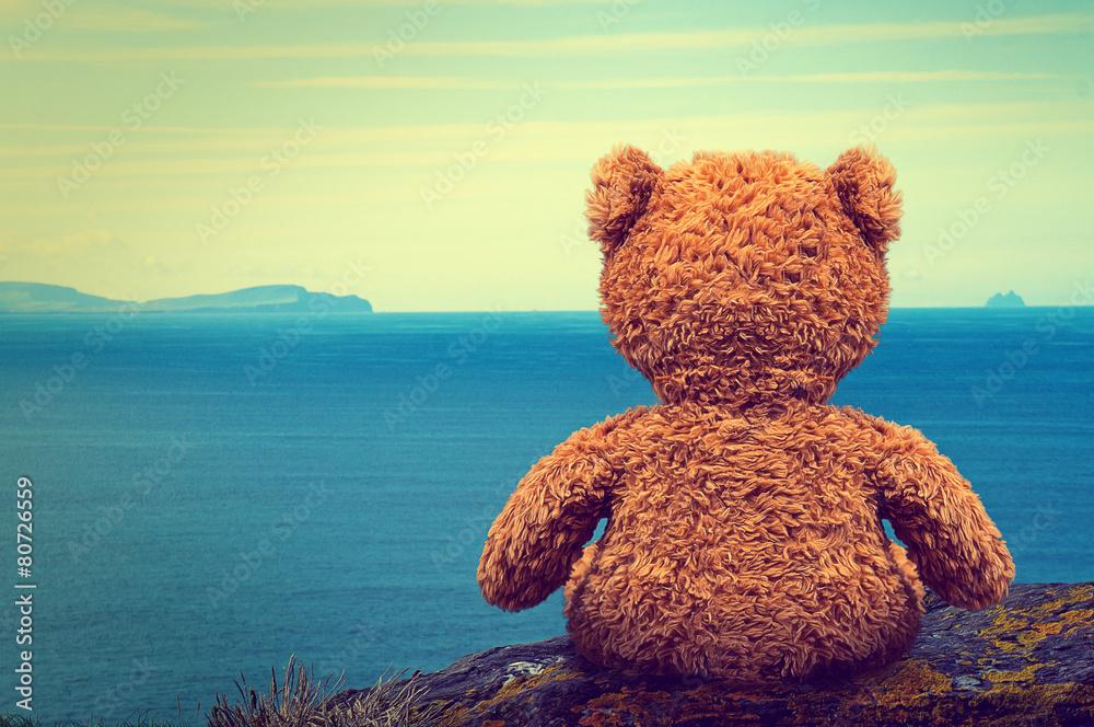 Fototapeta Lonely Teddy