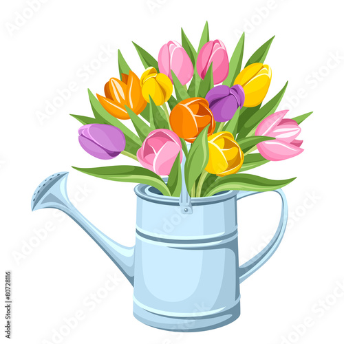 Bouquet of tulips in watering can. Vector illustration. Fototapeta