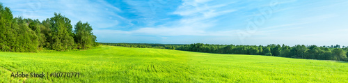 Poster Lime groen summer rural landscape a panorama with a field and the blue sky