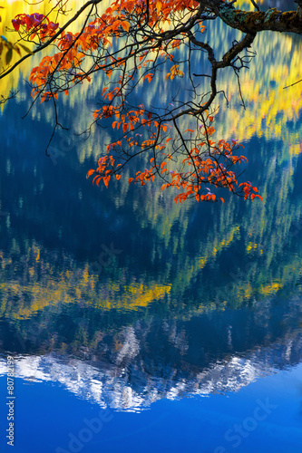 Fototapeta mirror lake at Jiuzhaigou scenic obraz na płótnie