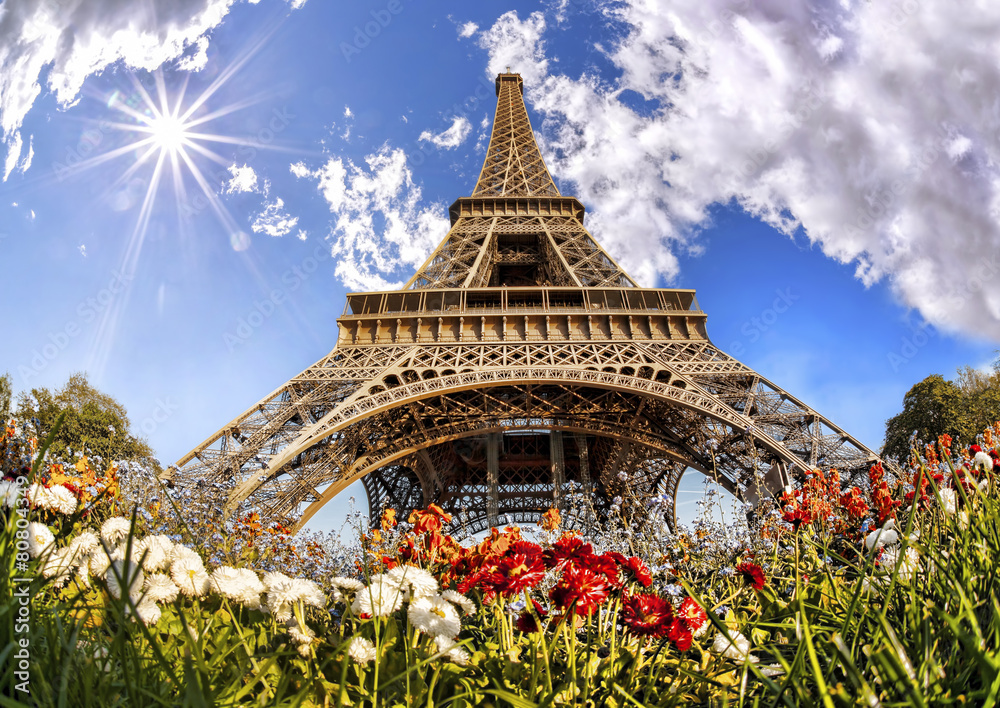 Fototapety, obrazy: Eiffel Tower with flowers  in Paris, France