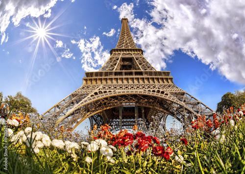 Obraz Wieża Eifla z kwiatami w Paryżu, Francja - fototapety do salonu