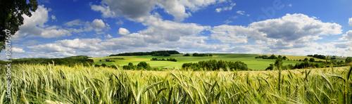 Poster Bleke violet Saarland Panorama Natur –Landschaft bei Eiweiler