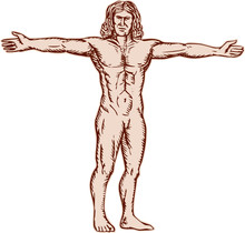 Vitruvian Man Arms Spread Front Etching