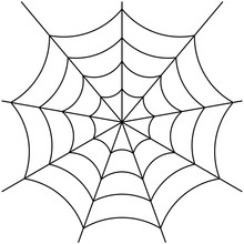 Spider Web Isolated On White V...