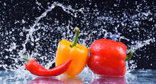 Wet Red And Yellow Pepper Closeup. Macro Water Drops