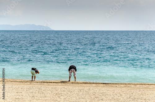 Fotografie, Obraz  Älteres Paar sammelt Muscheln am Strand