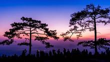 Phu Kradueng National Park At ...