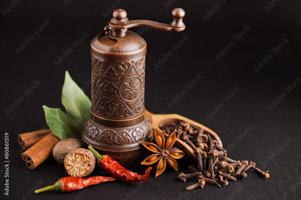 Fototapeta dark still-life with different spices and retro pepper mill