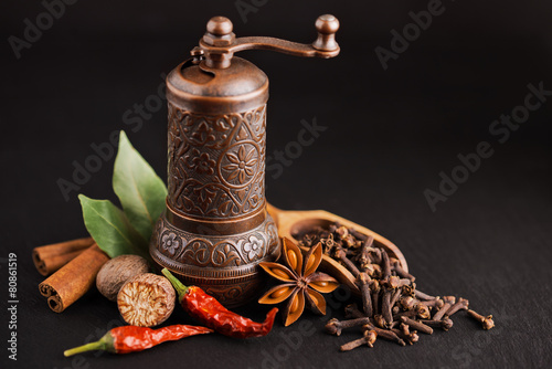 Fototapety, obrazy: dark still-life with different spices and retro pepper mill