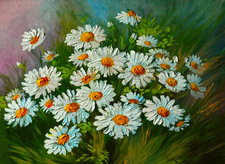 Plakat Oil Painting - abstract illustration of flowers, daisies, greens