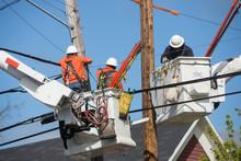 Neighborhood Powerline Workers