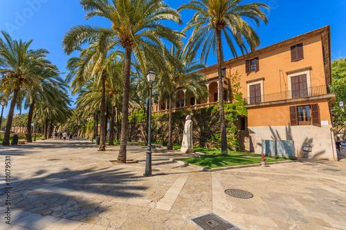 Foto op Canvas Barcelona Historic buildings in old town of Palma de Mallorca, Spain