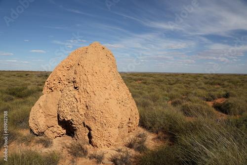 Staande foto Bleke violet Termitenhügel, Australien