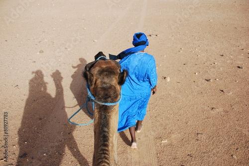 Fotografia, Obraz  Chamelier du désert