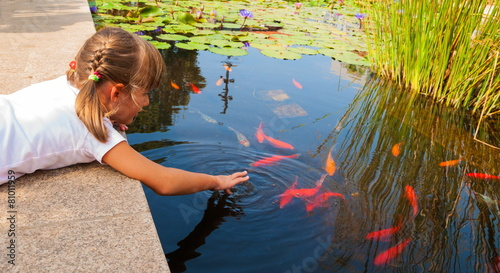 Canvas-taulu Little girl plays with ornamental fish that swim in  pond