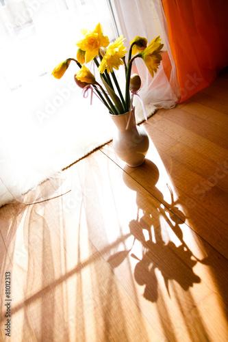 Narcissus Narcissus