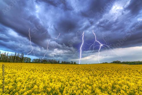 Plakat Letnia burza nad polem rzepaku w Polsce