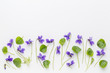 viola flowers on art canvas