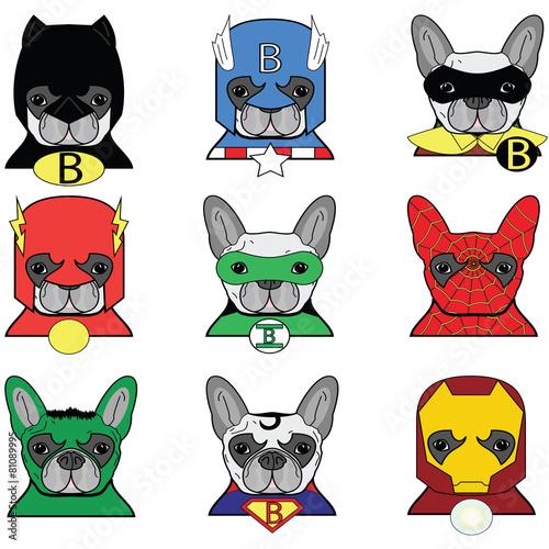 Photo  French bulldog  Dog Superheros