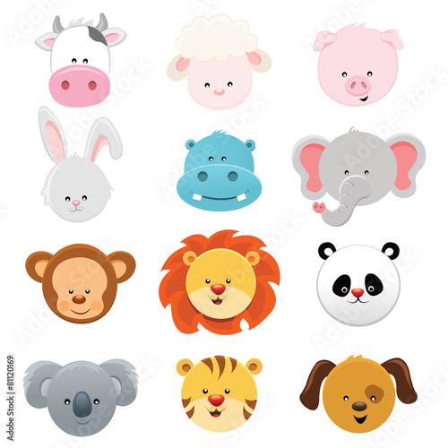 Photo  Animal Faces