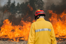 Firefighter Looking On Forest Fire