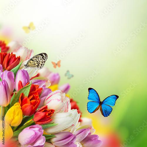 Deurstickers Vlinder Beautiful bouquet of tulips.