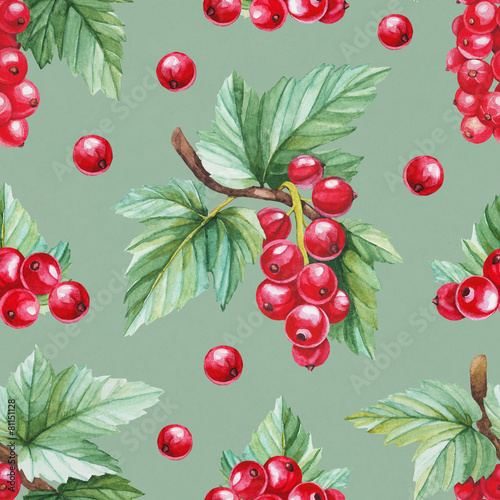 Seamless pattern with watercolor illustration of red currants - 81151128