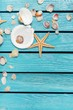 Wood. Seashells frame on wooden background. nautical border