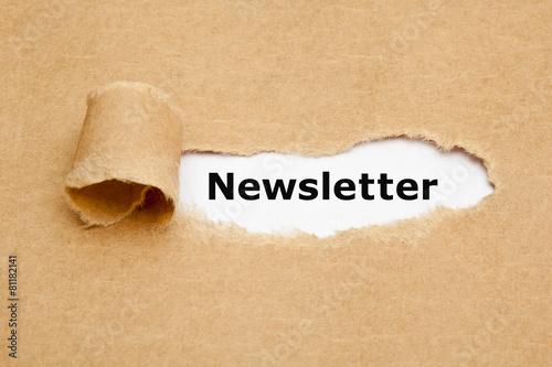 Fotografía  Newsletter Torn Paper Concept