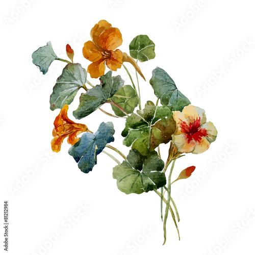akwarelowe-kwiaty