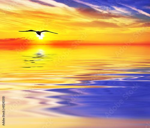 Fototapety, obrazy: puesta de sol de colores