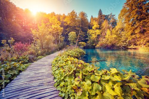 obraz dibond Park Narodowy Jeziora Plitwickie