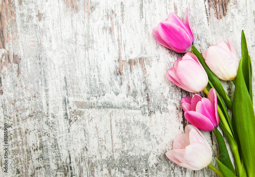 Foto  Border with pink tulips