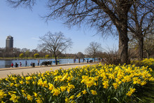 View Of Hyde Park At Spring