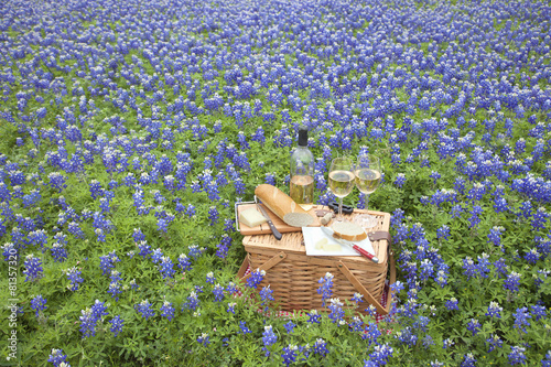 Staande foto Picknick Picnic basket with wine, cheese and bread in a Texas Hill Countr
