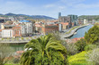 View of Bilbao city from Etxebarria park (Spain)