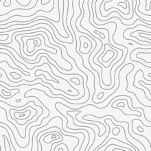 Topographic Map Seamless Patte...