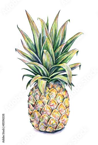 ananas-na-bialym-tle-akwarelowa-ilustracja