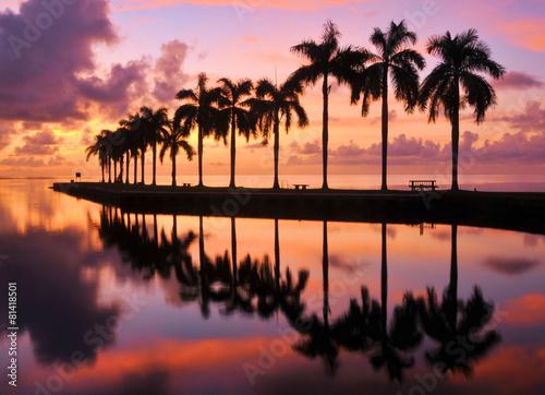 Photo  Miami Sunrise