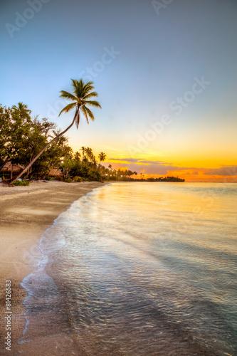 Foto op Canvas Caraïben isole caraibiche di polinesia con palme e tramonto