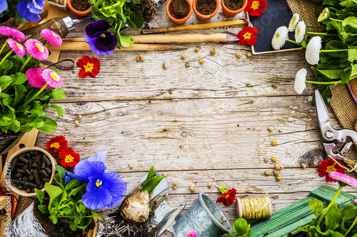Papiers peints Jardin Garden tools, flowers and seeds on a wooden background, frame