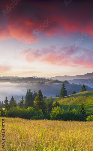 Spoed Foto op Canvas Lavendel Colorful summer sunrise in the foggy mountains.